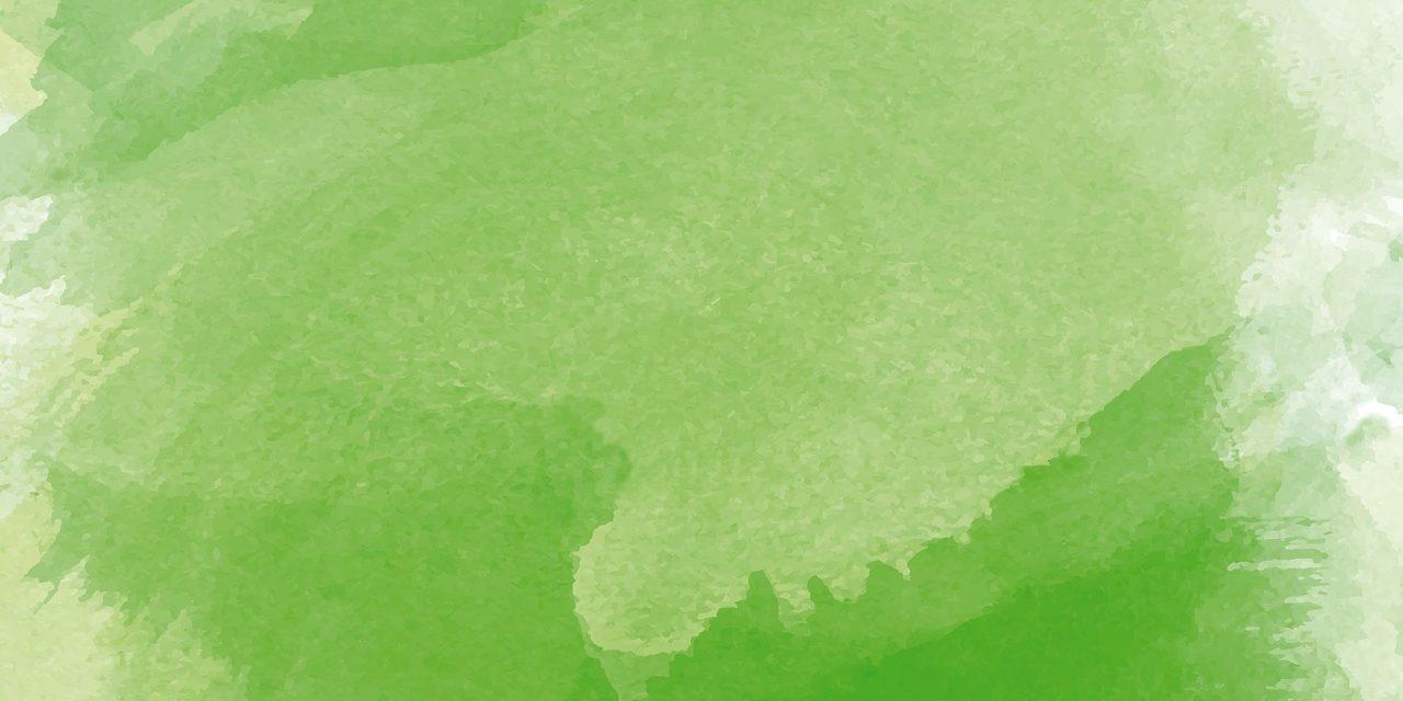 GREEN PAINTS: DA CACAO, MAIS E ARANCE LE NUOVE PITTURE ECOSOSTENIBILI