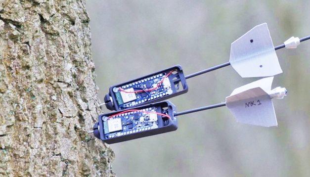 DRONI DI PATTUGLIAMENTO FORESTALE PER MONITORARE I CAMBIAMENTI AMBIENTALI